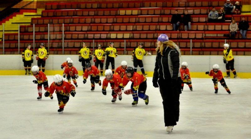 Hokejový oddíl HC Junior Mělník provádí nábor dětí narozených v roce 2007 a mladších.
