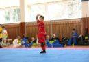 Úspěch žáků mělnické školy kung fu