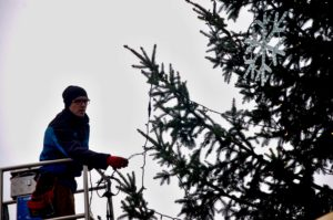 Mělnický vánoční strom se již připravuje na sobotní rozsvícení.