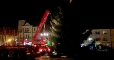 Vánoční strom na mělnickém náměstí Míru stojí od minulého víkendu; světla se na něm rozzáří v sobotu.