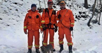 Hasiči zachránili psa uvízlého na skalách pod Březinkou