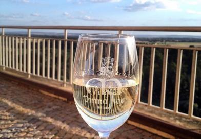 Putování za vínem aneb Ochutnávka nejen mladých vín smělnickými vinaři