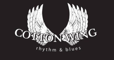 neratovice-koncert blues
