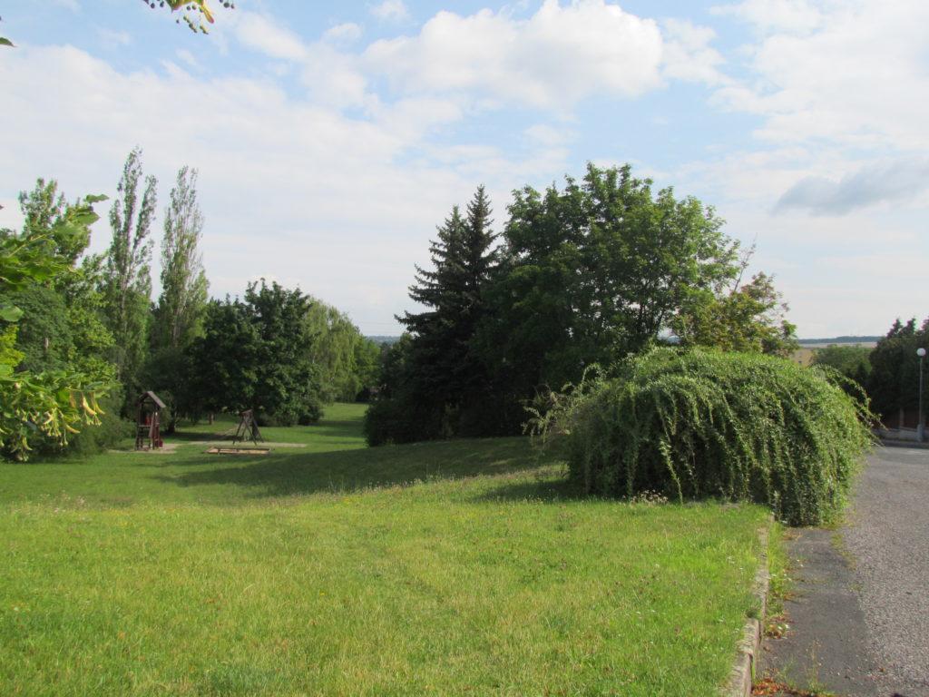 park na svini1