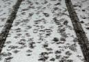 Středočeské silnice jsou po nedělním sněžení sjízdné