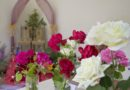 Slavnosti růží na zámku