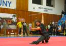 Mistrovství ČR ve wushu/kungfu vLounech 2018.