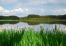 Radní aktualizovali koncepci ochrany přírody a krajiny vletech 2018 – 2028