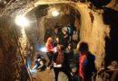 Podzemí domu U Zlatého beránka navštívilo 881lidí