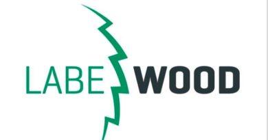LABE WOOD hledá nové kolegy